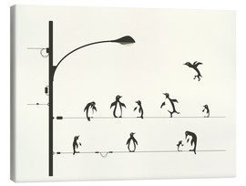 Canvas print  Pinguïns op een kabel - Jazzberry Blue