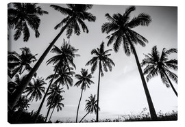 Canvas print  Palmboomsilhoetten