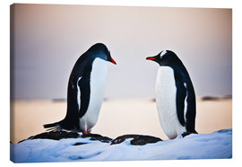 Canvas print  Two identical penguins