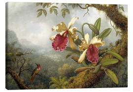 Canvas print  orchids and Hummingbird - Martin Johnson Heade
