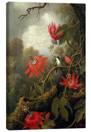 Canvas print  Kolibri en passiebloem - Martin Johnson Heade