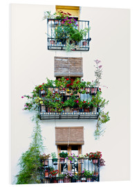 PVC print  Facade with balconies full of flowers in Valencia