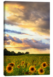 Canvas print  distant view - Bettina Dittmann