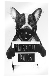 Acrylglas print  Break the rules, rebel dog - Balazs Solti