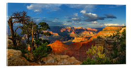 Acrylglas print  Grand Canyon Idyll - Michael Rucker