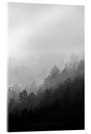 Acrylglas print  Misty mornings - Mareike Böhmer Photography