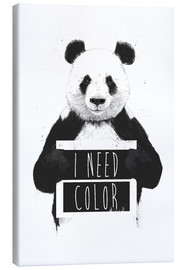 Canvas print  I need color - Balazs Solti