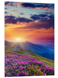 PVC print  Rhododendron blossom in the Carpathians
