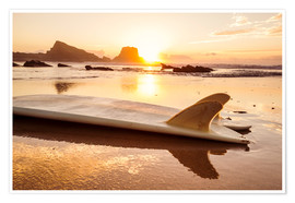 Premium poster Surfboards at the beach