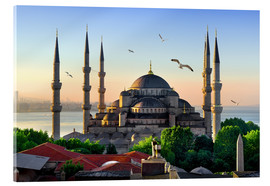 Acrylglas print  The blue mosque in Istanbul