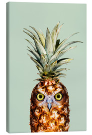 Canvas print  Pineapple Owl - Jonas Loose