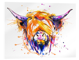 Acrylglas print  Scottish Highland Cow - Zaira Dzhaubaeva