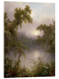 Acrylglas print  South American River - Martin Johnson Heade