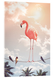 Acrylglas print  Flamingo and Friends - Jonas Loose