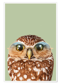 Premium poster HIPSTER OWL