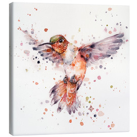 Canvas print  Rufous the hummingbird - Sillier Than Sally