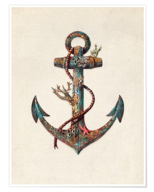 Premium poster  Reef anchor - Terry Fan