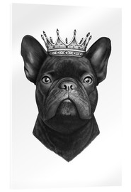 Acrylglas print  The French Bulldog king - Valeriya Korenkova