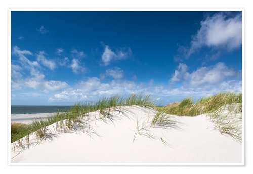 Premium poster Dunes in the summer wind