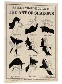 Acrylglas print  The Art of Shadow Play X - Mary Urban