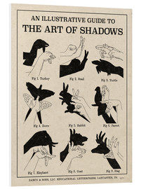 PVC print  The Art of Shadow Play X - Mary Urban