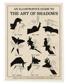 Premium poster  The Art of Shadows X - Mary Urban