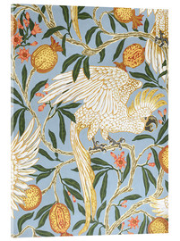 Acrylglas print  Cockatoo and Pomegranate - Walter Crane