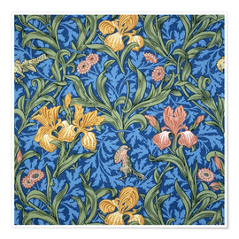 Premium poster  Iris - William Morris