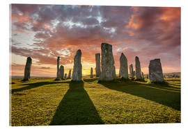 Acrylglas print  The plants of Callanish - age fotostock