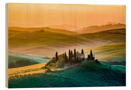 Hout print  Val d'Orcia, Tuscany, Italy - age fotostock