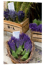 Acrylglas print  Baskets with lavender bouquets - Brenda Tharp