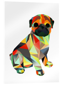 Acrylglas print  Molly Pug 2 - Miss Coopers Lounge