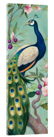 Acrylglas print  Pretty Peacock II - Julia Purinton