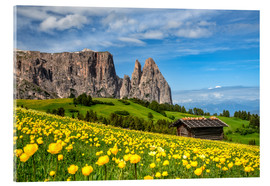 Acrylglas print  Spring on the Alpe di Siusi in South Tyrol - Achim Thomae