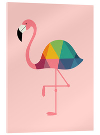 Acrylglas print  Rainbow flamingo - Andy Westface