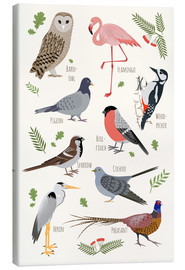 Canvas print  Bird Species - English - Kidz Collection