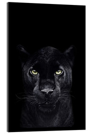 Acrylglas print  Black panther on a black background - Valeriya Korenkova