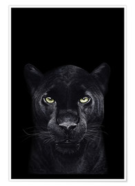 Premium poster Black panther on a black background