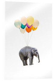 Acrylglas print  Elephant with colorful balloons - Radu Bercan