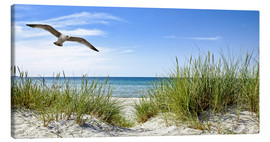 Canvas print  Seagull flight over sand dunes, Baltic Sea - Art Couture